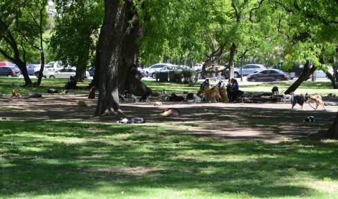 Parc de Palermo, Buenos Aires