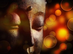 buddha 1915589 960 720 buddha 1915589 960 720