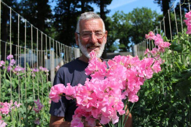 Henk Regterschot met een bos Lathyrus