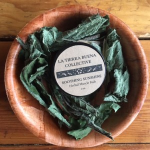 Soothing Sunshine | Herbal Muscle Rub