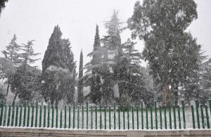 neve-latina-12