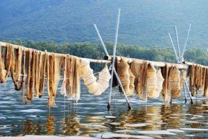 lago-paola-reti-pesca-sabaudia-47868215