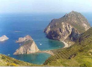 palmarola-latina-isola-478682756722