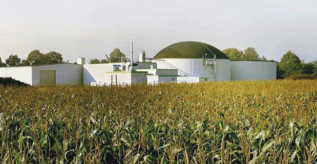 centrale-biomasse-latina-24ore-56876932