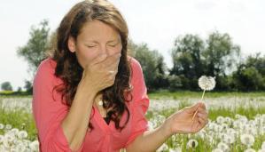 allergia-latina