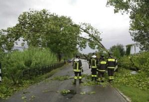 vigili-fuoco-alberi-caduti-latina