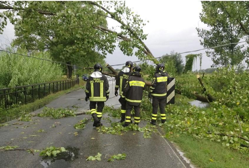 vigili-fuoco-alberi-caduti