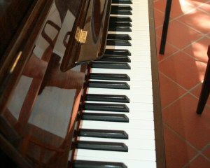 Pianoforte Il Seminario [1479]