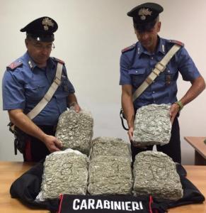 carabinieri-sequestro-marijuana
