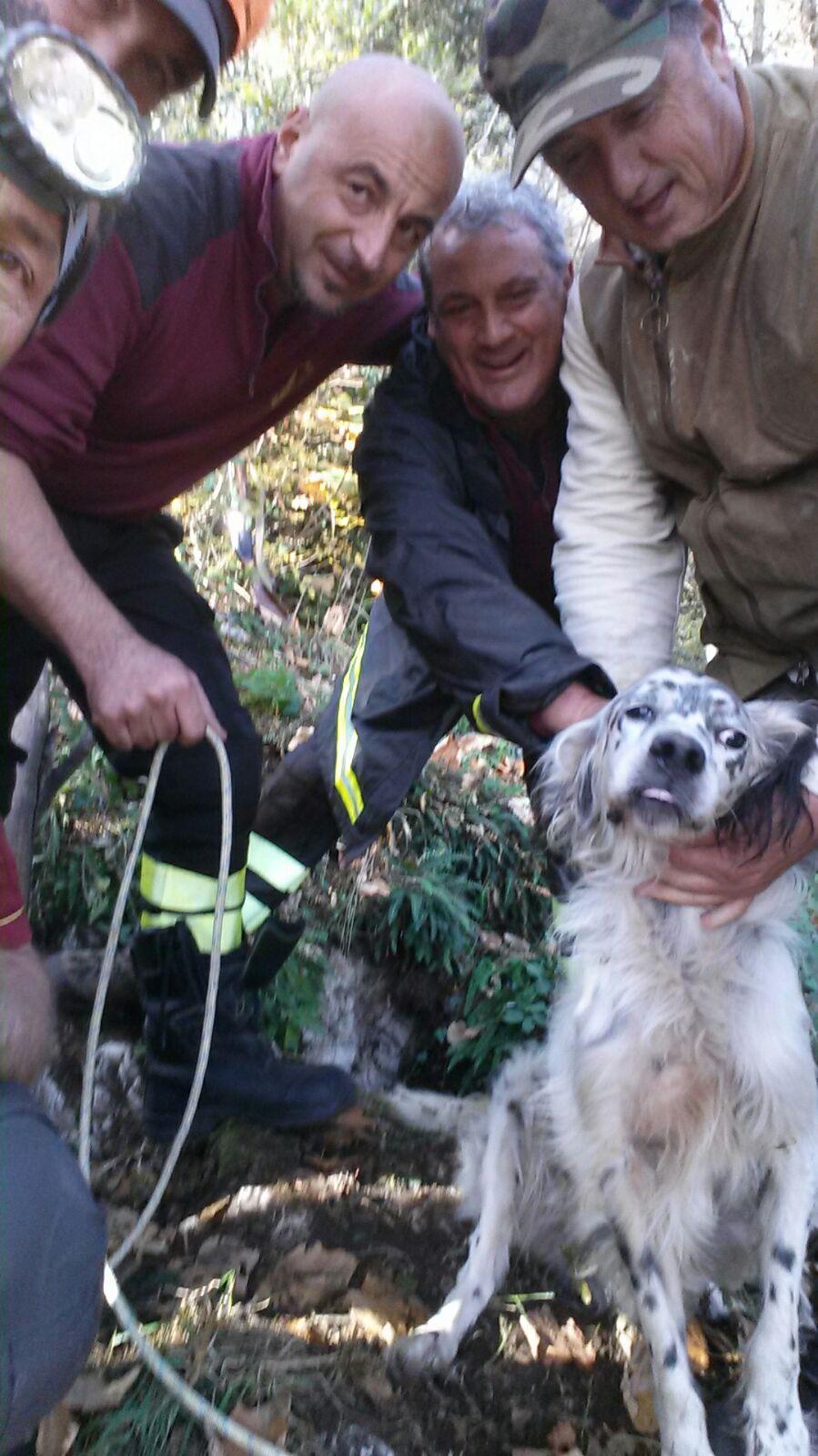 tom-cane-salvato-vigili-fuoco-latina