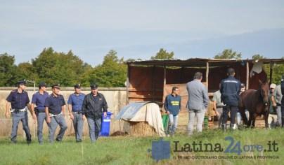 sgombero-terreni-cavalli-disilvio-latina-10