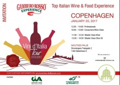 vini-italia-copenaghen3