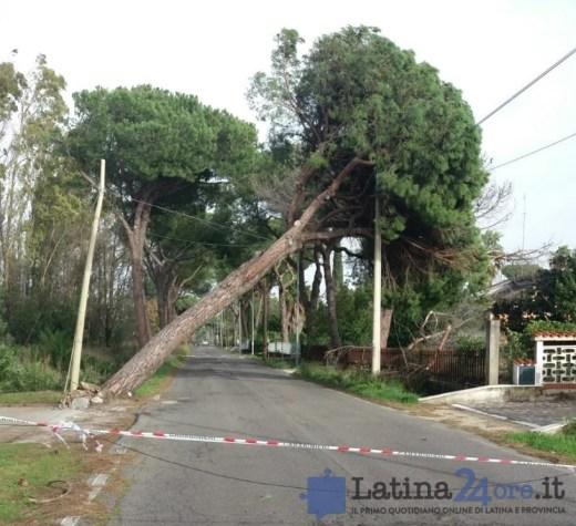maltempo-latina-vento-danni-1