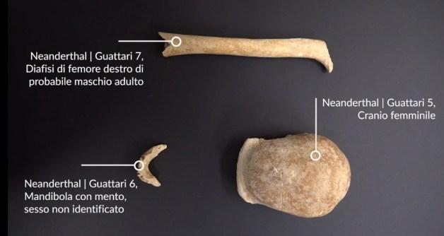 circeo-scoperta-uomini-neanderthal-1