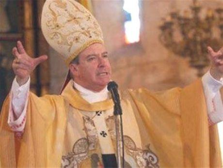 dr-cardinal-in-dress
