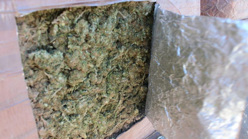 an overview of the controversy and the basis for the legalization of marijuana in united states of a Using marijuana may lead to use of more dangerous drugs — despite the move toward recreational legalization of marijuana in several states, health care and drug addiction professionals still have concerns about the drug's use for instance, marijuana is considered a gateway drug that potentially leads to the abuse of more dangerous or.