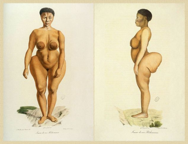 "Illustration of Sarah ""Saartjie"" Baartman from 'Illustrations de Histoire naturelle des mammifères'"