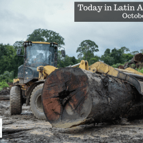 Journalistic Investigation Reveals How Illegal Timber Ransacks Amazon Forest