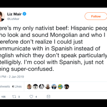 We Already Have Our First #NoMames of 2019: Liz Mair's 'Only Nativist Beef'
