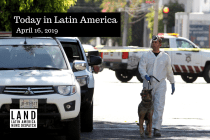 30 Bodies Discovered in Clandestine Grave in Mexico
