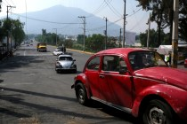 As Beetle Ends, Iconic Original Thrives in Mexico City Hills