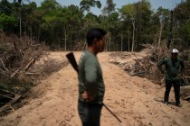 Brazil's Environmental Workers Tell of Decline Before Fires
