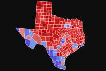 The New Voters of Texas