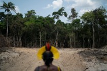Indigenous Leader Calls for Help in Brazil's Biggest Reserve