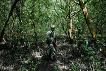 Mexico Finds Clandestine Burial Pits in North, Gulf Coast