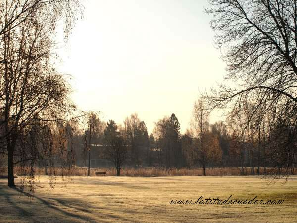 Promise of a winter