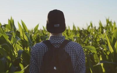 Planting Seeds->Harvesting Gifts