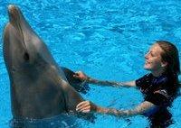 delfiniHP