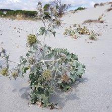natura Sardegna