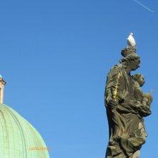 gabbiano sulla statua e cupola