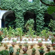 cortile Barrio