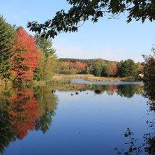 autunno in Quebec acero