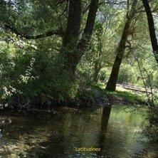 ruscello Parco d'Abruzzo