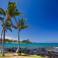 Spiaggia hawaiana