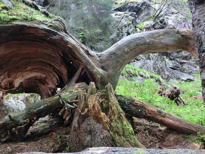 Stubai il cuore verde del tirolo austriaco latitudinex for Affitti cabina sole valle