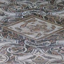 mosaico domus del mito