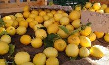 Limoni biologici al mercato