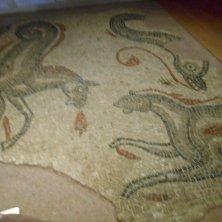 mosaico romano al museo terme
