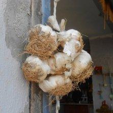 treccia d'aglio