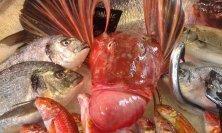 stand del pesce