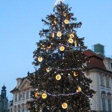 albero città vecchia