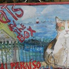 murales per i gatti di Valparaiso