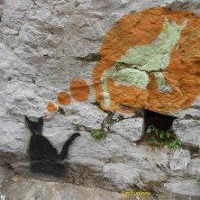 sogni felini nel graffito