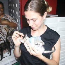 volontarie Pet Haven