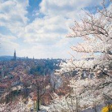 Berna primavera