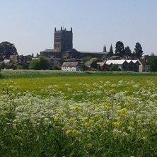 abbazia e campi